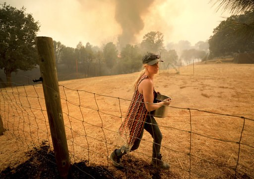 (Kent Porter/The Press Democrat via AP). Crystal Easter uses a pot of water to put out spot fires around her home, as her neighbor's home burns to the ground in the background, Monday, Aug. 6, 2018, in Spring Valley, Calif. The Ranch Fire spotted 200 y...
