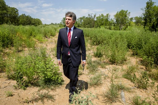 (AP Photo/Karen E. Segrave). In this July 25, 2018, photo, Stephen Bell, president and CEO of the Arkadelphia Area Chamber of Commerce, shows parts of the 900-acre site of what he hopes will be a new paper mill, one of several Chinese-backed deals Arka...