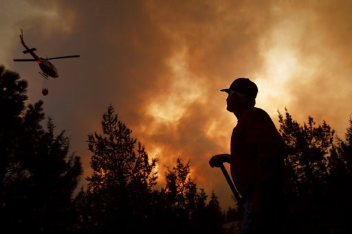 (AP Photo/John Locher). Hummer Estes watches a helicopter battling the Hat Fire, Thursday, Aug. 9, 2018, in Fall River Mills, Calif.
