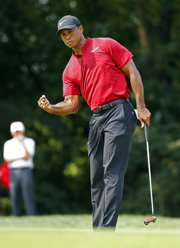 (AP Photo/Brynn Anderson). Tiger Woods reacts to sinking a birdie putt on the ninth green during the final round of the PGA Championship golf tournament at Bellerive Country Club, Sunday, Aug. 12, 2018, in St. Louis.