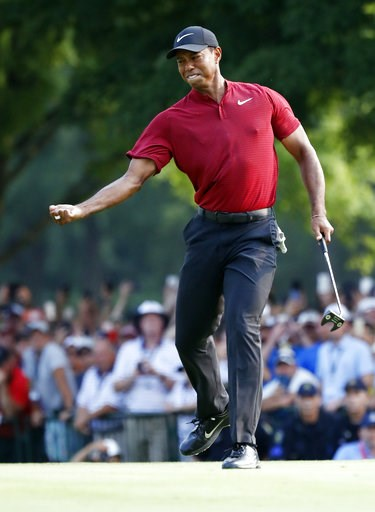 (AP Photo/Brynn Anderson). Tiger Woods celebrates after making a birdie putt on the 18th green during the final round of the PGA Championship golf tournament at Bellerive Country Club, Sunday, Aug. 12, 2018, in St. Louis.