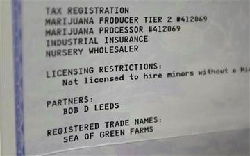 (AP Photo/Ted S. Warren). This June 25, 2014, photo shows the Washington state business license for marijuana grower Sea of Green Farms at the establishment in Seattle.