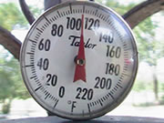 Larry and Susan shared this photo taken in August, 2007, on the front porch of their home near Columbia, SC. When it's hot, be sure to drink plenty of water.