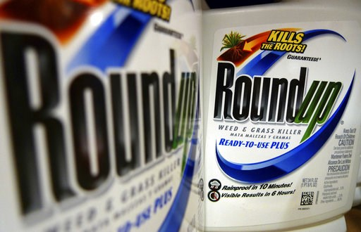 (AP Photo/Jeff Roberson, File). FILE - In this June 28, 2011, file photo, bottles of Roundup herbicide, a product of Monsanto, are displayed on a store shelf in St. Louis. A San Francisco jury on Friday, Aug. 10, 2018, ordered agribusiness giant Monsan...