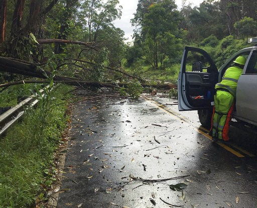 (Hawaii Department of Transportation via AP). This photo provided by the Hawaii Department of Transportation shows tree limbs that have blocked the Hana Highway near Hana on the island of Maui Wednesday, Sept. 12, 2018. Maui was hit with heavy rain and...