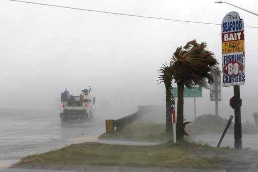 (AP Photo/Tom Copeland). A work truck drives on Hwy 24 as the wind from Hurricane Florence blows palm trees in Swansboro N.C., Thursday, Sept. 13, 2018.