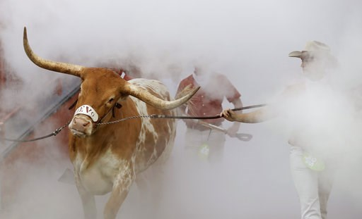 (AP Photo/Eric Gay). Texas mascot Bevo is guided through a cloud of smoke before an NCAA college football game against Southern California, Saturday, Sept. 15, 2018, in Austin, Texas.