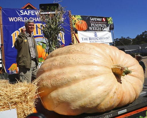 (Aric Crabb/Bay Area News Group via AP). Steve Daletas of Pleasant Hill, Ore., celebrates his first place win in the 45th annual Safeway World Championship Pumpkin Weigh-Off on Monday, Oct. 8, 2018, in Half Moon Bay, Calif. A commercial pilot from Oreg...