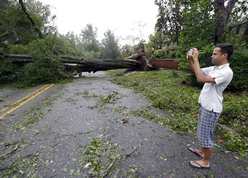 (AP Photo/Chuck Burton, File). FILE - In a  Friday, Sept. 14, 2018 file photo, Shane Fernando takes a photo of fallen trees near his home in Wilmington, N.C., after Hurricane Florence made landfall.  Fernando is worried about the approach of Hurricane ...