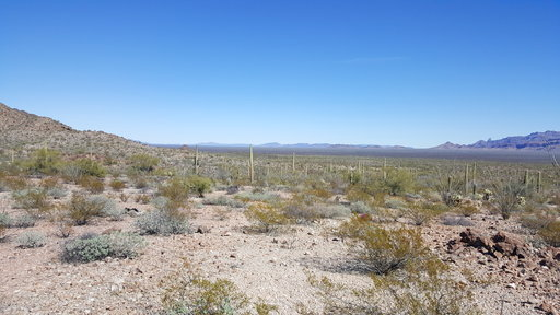 (Tucson Sector Border Patrol via AP). This undated image provided by Tucson Sector Border Patrol shows the desert terrain close to Arizona's boundary with Mexico near Lukeville, Ariz. Large groups of Guatemalan and other Central American migrants have ...