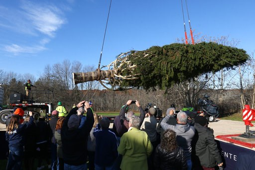 (Patrick Oehler/Poughkeepsie Journal via AP). The Rockefeller Center Christmas tree is hoisted by crane to a flatbed truck, Thursday, Nov. 5, 2018 in Wallkill, N.Y. It will be transported to Manhattan where it will be erected at Rockefeller Center this...