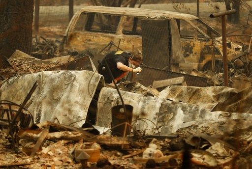 (AP Photo/John Locher). A member of the Sacramento County Coroner's office looks for human remains in the rubble of a house burned at the Camp Fire, Monday, Nov. 12, 2018, in Paradise, Calif.