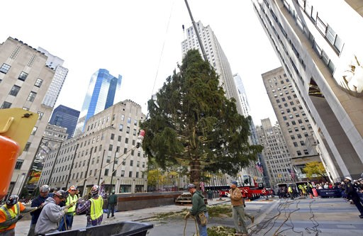 (Diane Bondareff/AP Images for Tishman Speyer, File). FILE - In this Nov. 10, 2018 file photo, workers raise the 2018 Rockefeller Center Christmas tree, a 72-foot tall, 12-ton Norway Spruce from Wallkill, N.Y. in New York.  A ceremony will be held on W...