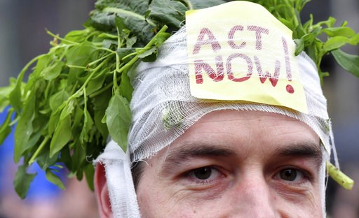 (AP Photo/Geert Vanden Wijngaert). A demonstrator wears a headband stuffed with greens and a sign which reads 'act now' during a 'Claim the Climate' march in Brussels, Sunday, Dec. 2, 2018. The climate change conference, COP24, will take place in Polan...