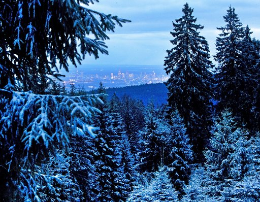 (AP Photo/Michael Probst). Snow covered trees of the Taunus hills stand high above the skyline of Frankfurt, Germany, Wednesday, Jan. 9, 2019.