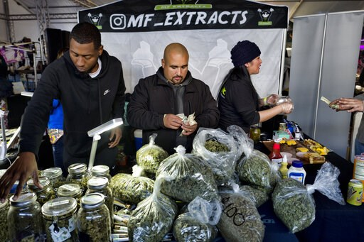 (AP Photo/Richard Vogel,File). FILE - This Saturday, Dec. 29, 2018 file photo shows vendors from MF Extracts counting their intake of cash at their booth at Kushstock 6.5 festival in Adelanto Calif. Gov. Gavin Newsom recommended a sharp increase in spe...
