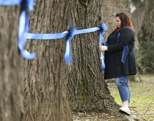 (AP Photo/Rich Pedroncelli). Vicky Oliverius ties blue ribbons on trees, Friday, Jan. 11, 2019, near the scene were Davis Police Officer Natalie Corona was shot and killed in Davis, Calif. Corona, 22, who had been on the job only a few weeks was slain,...