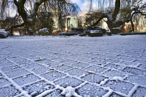 (AP Photo/Richard Vogel). Downtown Portland is seen behind a row of trees and a snow covered pedestrian walkway along the Willamette river in Portland, Ore., on Tuesday, Feb. 5, 2019. A winter storm overnight brought light snow and icy conditions to th...