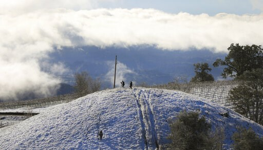 (Kent Porter/The Press Democrat via AP). Kendall-Jackson vineyards are covered in snow along the foot of Black Mountain, above the Alexander Valley near Geyserville, Calif., Tuesday, Feb. 5, 2019.