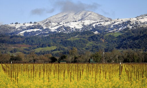(Kent Porter/The Press Democrat via AP). The valley floor says spring, Geyser Peak and the surrounding foothills embrace winter above Alexander Valley, Tuesday, Feb. 5, 2019 near Geyserville, Calif.