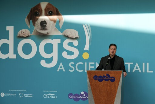 "(AP Photo/Richard Vogel). In this Tuesday, March 12, 2019 photo Jeffrey Rudolph President of the California Science Center announces a new exhibition called ""Dogs! A Science Tail,"" that is part science, part history, part Norman Rockwell Americana and ..."