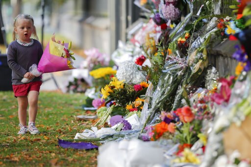 (AP Photo/Vincent Thian). A girl walk to lay flowers on a wall at the Botanical Gardens in Christchurch, New Zealand, Sunday, March 17, 2019. New Zealand's stricken residents reached out to Muslims in their neighborhoods and around the country on Satur...