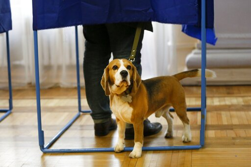 (AP Photo/Efrem Lukatsky). A man casts his ballot, as his pet waits for him at a polling station, during the second round of presidential elections in Kiev, Ukraine, Sunday, April 21, 2019. Top issues in the election have been corruption, the economy a...