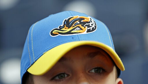 (AP Photo/Tony Dejak). Jake Sheehan, 9, wears an Akron RubberDucks cap as he watches a minor league baseball game between Akron and the Bowie Baysox, Thursday, April 18, 2019, in Akron, Ohio. Up in New England, there are yard goats. In the Deep South, ...
