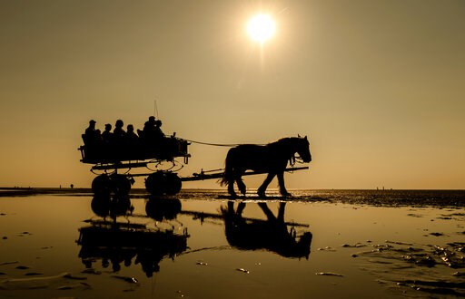 (Mohssen Assanimoghaddam/dpa via AP). People enjoy the ride in a horse-drawn carriage through the Wadden sea near Cuxhaven, Germany, Wednesday, April 24, 2019.